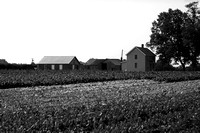 Panther Rd. Farm